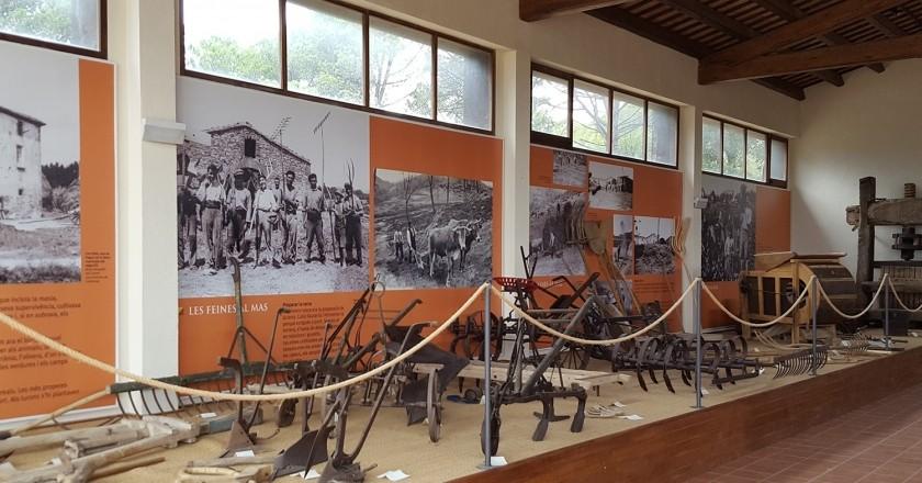 Actividades en el Museo del Campesinado de Fogars de la Selva