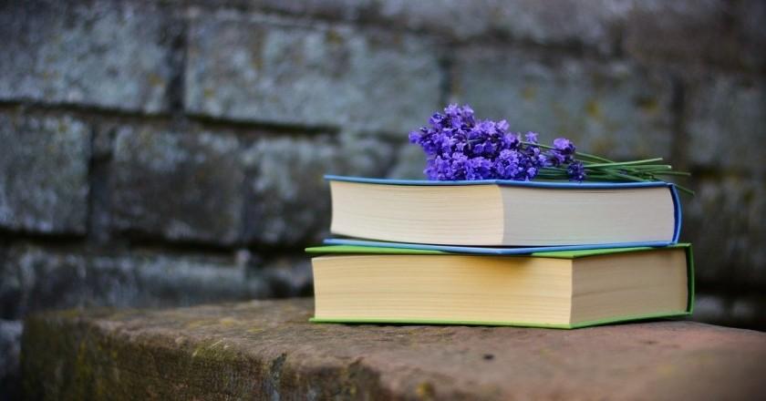 Deixa't portar per la cultura: femturisme literari