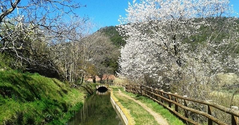 4 routes along the Llobregat river