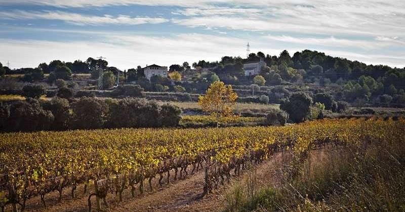 Route vers l'ermitage de Penyafel à Santa Margarida i els Monjos