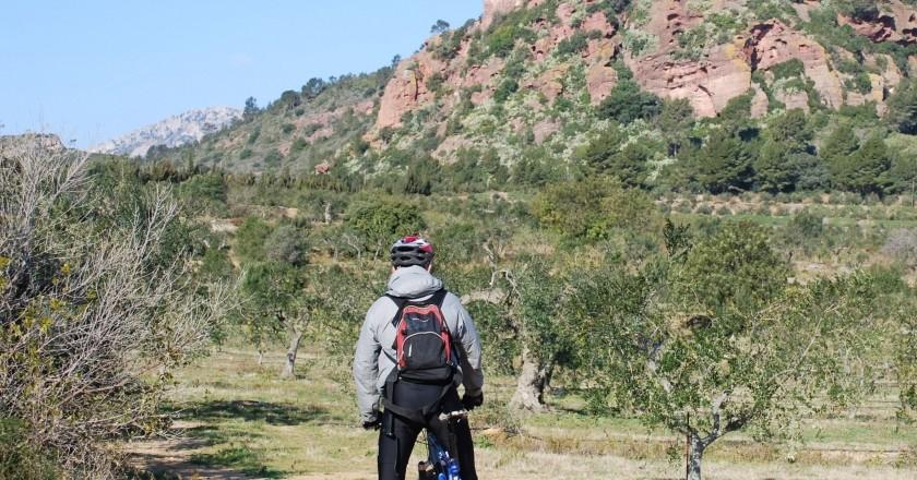 Ruta Cicloturística de l'oli a Mont-roig del Camp