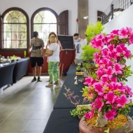 Arenys de Flores