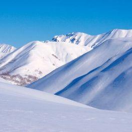 19 de gener, dia Mundial de la Neu