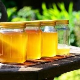 Fête du miel à Ribes de Freser