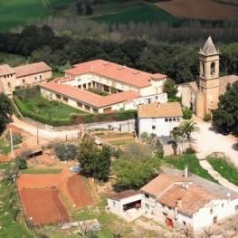 Fiesta mayor de Sant Medir en Sant Gregori