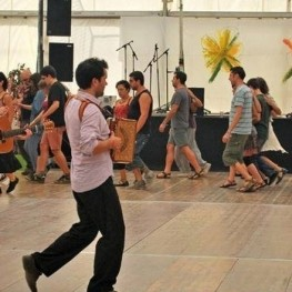 Festival Berguedà Folk a Puig-reig