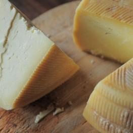 Foire européenne du fromage à Ripoll