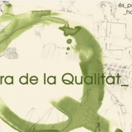 Fair Q in Balaguer