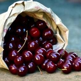 Gastronomic days of the cherry of Caldes de Montbui