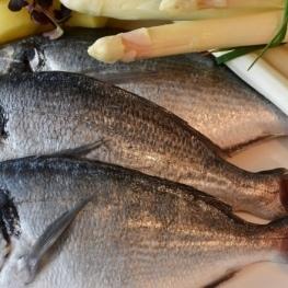Jornades Gastronòmiques del Peix de la Llotja i de l'Arrossegat