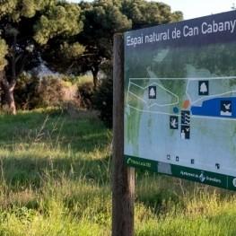 Environnement aquatique à Can Cabanyes de Granollers