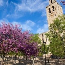 Passejades guiades pels parcs i jardins de Sant Cugat del Vallès