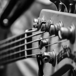 Sona Guitarra a Viver i Serrateix