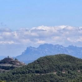 """""""Xino-Xano"""" cicle de caminades al bosc a Argençola"""