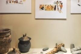 Exposició al Museu Josep Castellà