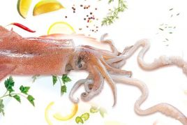 Jornadas gastronómicas del Calamar de Arenys.Calamarenys