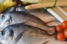 Journées gastronomiques du poisson de la Lonja et du riz