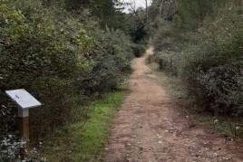 Passejada guiada de Benestar i Silenci a Sant Celoni