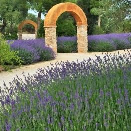 Jardí Botànic Medicinal, Ecoherbes Park