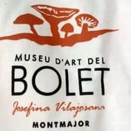 Museu d'art del Bolet