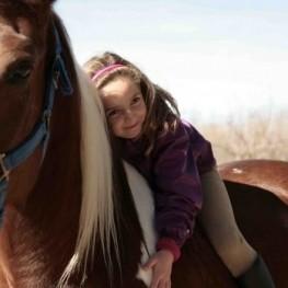 Activitats amb animals per fer en família