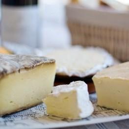 Conoce todos los quesos de Cataluña