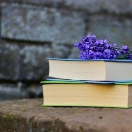 Déjate llevar por la cultura: femturisme literario