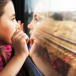 Viatjar en tren, un regal per a la vista