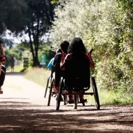 Vies verdes accessibles per a tothom