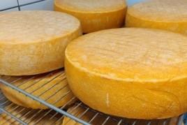 Tres formatgeries premiades que no ens podem perdre Llobregat…