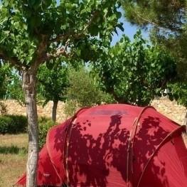 Réductions sur le camping basse saison 2021