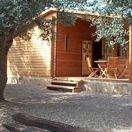 Réductions en bungalow en basse saison 2021