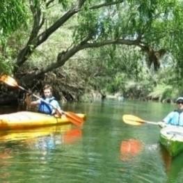 Tast de vins i ruta en kayak