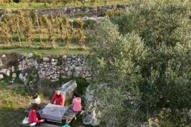 Hike and wine tasting