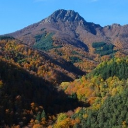 3 rutes al Parc Natural del Montseny