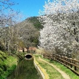 4 rutes pel riu Llobregat