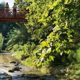 El camí del riu a l'Alt Penedès