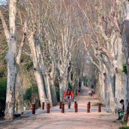 Ruta Boca de la Mina a Reus