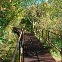 Ruta de la Torre dels moros i passeig de Sant Antoni
