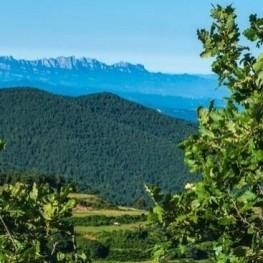Ruta el domini de la terra a L'Estany