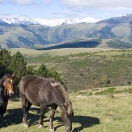 Ruta entre la vall de Camprodon i l'Alt Vallespir