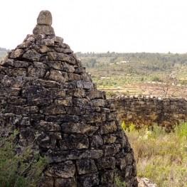 Visite guidée des paysages de la pierre sèche à Torrebesses