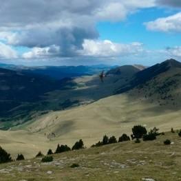 Ruta pels veïnats de Pardines sota l'ombra de la Serra Cavallera
